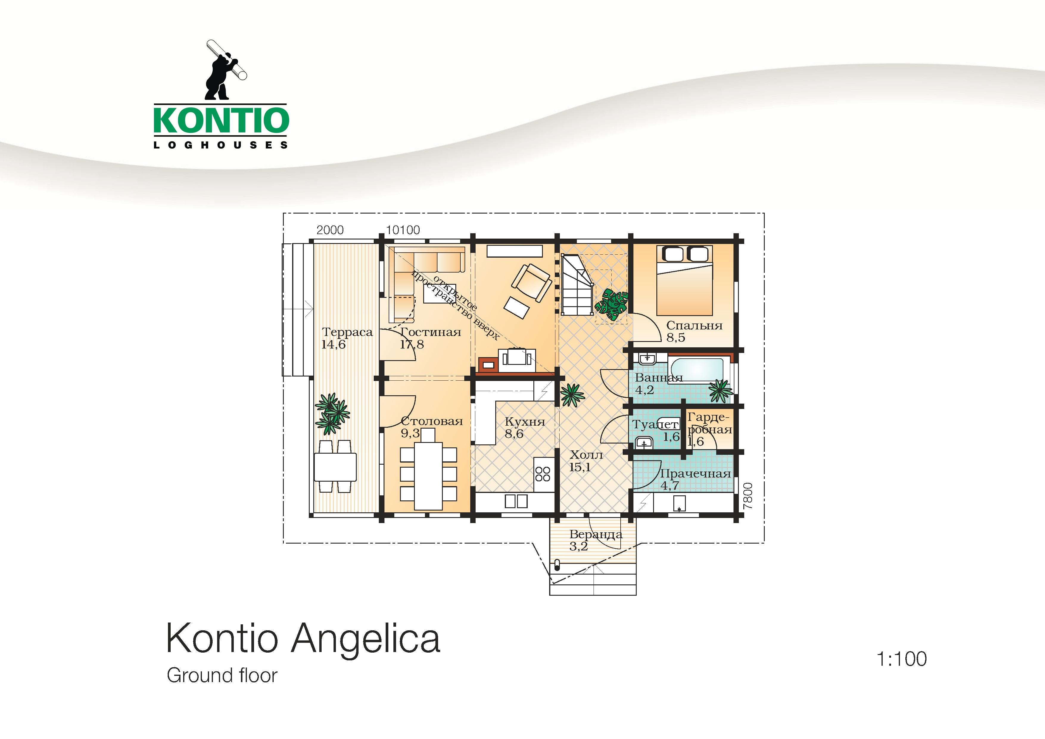 Проект «Angelica»